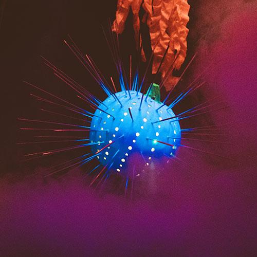 Neon Reef Description