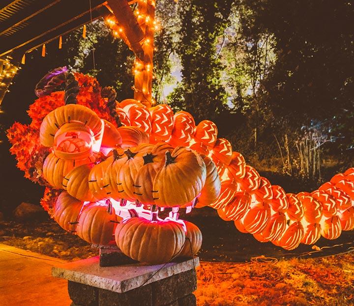 Pumpkin Nights | Los Angeles, CA